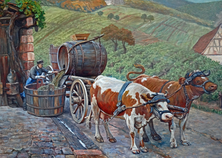 Detail: Ochsengespann